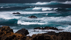 Wind and Waves (San Francisco Gal) Tags: mendocino coast pacific ocean wave spume rock seascape