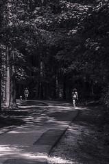 05/52b Jogger's Path (Doug.Mall) Tags: dogwood52 52weeks apexcommunitypark bw challenge landscape photochallenge blackandwhite northcarolina usa