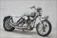 bikes-2009euro-002-a-l