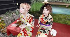 shopping@CCB() () Tags: barberyumyum secondlife  sljp naminoke tomoto kimono  corsage mesh  pipe hair shopping   fashion
