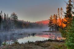 Early Morning, Algonquin Park (klauslang99) Tags: klauslang nature naturalworld northamerica canada algonquin park fog mist early morning trees fall autumn