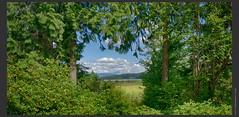 Mt St Helens (sudi.chakravarthy) Tags: mtsthelens portland oregon volcano peaceful tranquil