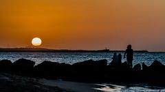 21082016-_DSC2680[1] (Dario Coelho Fotografo) Tags: sunset summer beach sun lovesuntets sea silhouette people stones landscape amazing orange blue peace lovely cute beautiful brazil nikon top sunday golden