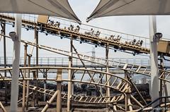 DSC_0112 (Frankie Tseng ()) Tags: amusementpark park festival festivals ferriswheel coffeemug carousel adventure blur pan rollercoaster scary speed pirateship spaceship bw bwphotography height kids kidspark