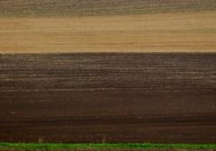 Feld bei Neusa (zikade) Tags: felder neusas gerolzahn erde stoppelfeld getreidefeld braun landwirtschaft boden zweifarbig zweifarben