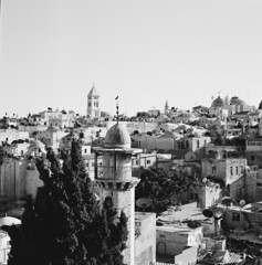 Crow of Jerusalem (swedish silver) Tags: hasselblad imacon jerusalem israel crow 80mm zeiss trix