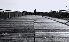 marcher sur le pont - walk on the bridge (png nexus) Tags: nb bw noir black blanc white rue street pont bridge