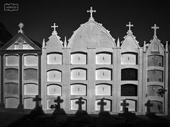 Cruces/ Crosses (Jose Antonio. 62) Tags: spain espaa asturias mohas beautiful bw blancoynegro blackandwhite building cross cruz cementerio cemetery wewanttobefree