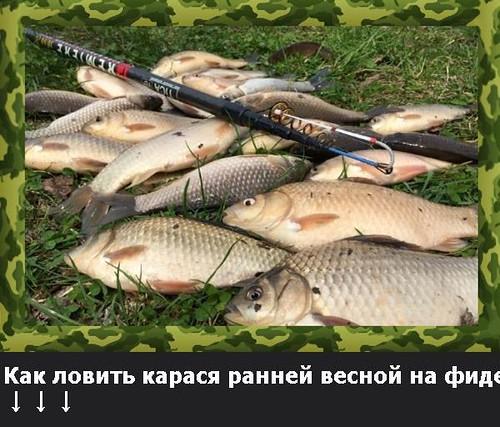 где ловить рыбу в твери зимой декабрь