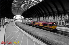 Glorious York (Resilient741 Photography) Tags: class 66 66150 ews dbs dbc db schenker 6n70 6x70 point carriers freight train shed trains railway railways diesel loco locomotive york br british rail ecml east coast main line north yorkshire color colour pop selective de sat desat photography landscape black white band w b