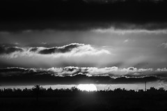 When the sun rises 53 (Abd-Elilah Ouassif) Tags: ciel nuages soleil aube leverdujour maroc extrieur matin lumire paysage calme horizon monochrome cloudy dawn sun sunrise morocco morning outside bw light calm landscape abdelilah ouassif nikon d7000 55300mmf4556gvr nikkor 2016