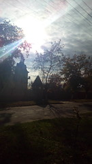 207/365 Morning. Autumn (zinushana) Tags: projectlife project project365 autumn light sun glow  365