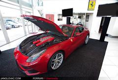 Ferrari F12berlinetta (Jan Glovac Photography) Tags: horse car italian australia ferrari perth prancing f12 v12 berlinetta barbgallo