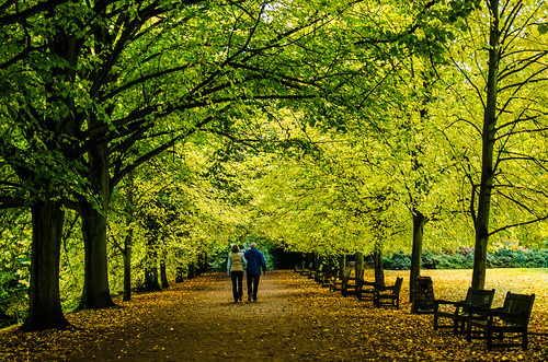 park autumn woman man london fall nikon exercise path walk hampsteadheath kenwood lightroom 1855mmvr d5100