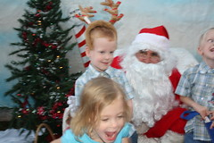 IMG_2961 (drjeeeol) Tags: santa animal katie charlie triplets toddlers 2012 refuge backtonature 50monthsold