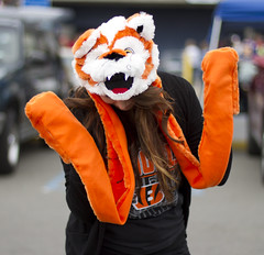 Cincinnati Bengals super fan