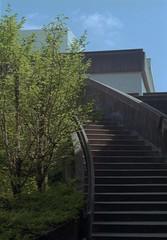 West Mall Stairs (jvde) Tags: 3570mmf3345nikkor burnaby coolscan film nikon nikonfe sfu gimp