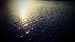 Watery Sunset (Proleshi) Tags: bionic florida motorola droid josephs jamal proleshi