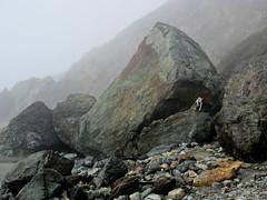Wendy swallowed by the whale (jimtierney) Tags: california november beach rock whale jonah wendydascoli 2012 jimtierney