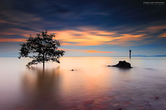 ...Can we still be friend... (Fakrul J) Tags: ocean trees sunset beach water outdoors scenic malaysia dreamy attraction manfrotto portdickson longexposures pasirpanjang canonefs1022mm canoncamera longexposurephotography leefilters seasapes reversegnd darylbensonreversegrad canoneos600d fakruljamil wwwfakruljamilcom proglassnd neutraldensity3stop singhrayreversegraduatedneutraldensity