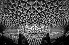 Kings Cross Lattice - Explored (Sean Batten) Tags: city uk roof england urban blackandwhite bw london lines nikon cityscape curves fisheye trainstation kingscross lattice d90
