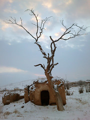 Home and snow (P A H L A V A N) Tags: park photography photo persian iran 21 d dar persia iranian dare pars   2012   irani       parsi daregaz     dareh    dargaz  iraninan pahlevan    pahlavan darbandi iranmap iranmapcom daragard darehgaz darhgaz