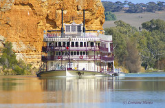 Paddle-wheeler PS Murray Princess  ... on Explore 19 Dec'12 (aussiegypsy_Katherine, NT) Tags: explore106 explore rivermurray rivermurrayprincess southaustralia australia australian aussie river bank water trees cliffs rural country bend reflections mirror mirrored flow paddlewheeler steamboat paddlesteamer cruise passengers tourist tourism journey trip adventure nature landscape scenery travel outdoors holiday mannum captaincookcruises exploring countryside transport bygone australiana memorable psmurrayprincess lorraineharris aussiegypsy discover discovery