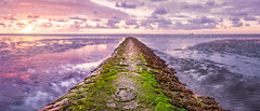 Buhnenlper (Andreas van Eikeren) Tags: cuxhaven nordsee watt buhne sonnenuntergang wasser