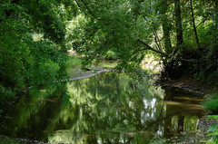Hamilton Creek (timbo on the hill) Tags: dxo summer usa indiana remedy ranch remedyranch