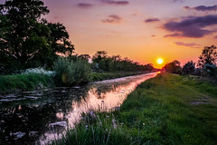 Royal Sunset (cogy) Tags: royal canal kilcock kildare ireland sunset colourful summer still calm peaceful