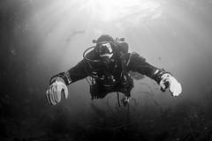 20160803-Eyemouth13 (Dacmirc) Tags: eyemouth diving ukdiving rebreather