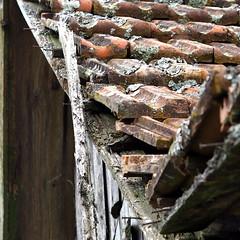 Frankfurter Pfanne (HORB-52) Tags: berndsontheimer badenwrttemberg blackforest dach dachziegel frankfurterpfanne feldscheune