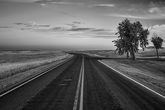 Around the bend (green2mm1) Tags: blackandwhite landscape road tree clouds contrast nature open sky