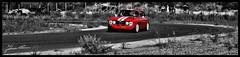 Gt 1750 (- Fabrizio -) Tags: alfaromeo alfa romeo car cars automobile auto red rossa gt gt1750 1750 street road race lap bw oldcar old oldcars sardegna italia italy italiancar italiancars nikon nikond5000 d5000 traction effect