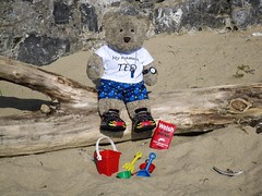 I  Tenby! (pefkosmad) Tags: tedricstudmuffin teddy bear ted cute cuddly plush stuffed soft toy tedsholibobs holibobs tenby pembrokeshire wales cymru uk seaside beach bucket spade sandcastle holiday vacation vacances travel