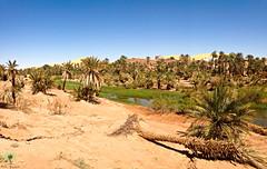 Le vieux Ksar de Taghit (Ath Salem) Tags: algrie bchar taghit beni abbes kenadsa barrage djorf torba dsert sahara tourisme dcouverte palmeraie           dunes zousfana saoura