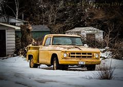 Mellow Yellow (HTT) (13skies) Tags: thursday hdr singleshothdr happytruckthursday htt old rundown akeeper classic wheels relic heap yellow