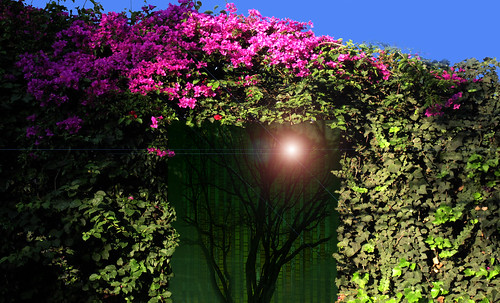 "038de_BABILONIA_a_FUKUOKA • <a style=""font-size:0.8em;"" href=""http://www.flickr.com/photos/30735181@N00/8162053684/"" target=""_blank"">View on Flickr</a>"