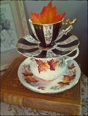 Vintage autumn teacup stack (eg2006) Tags: china thanksgiving old autumn white black fall halloween leaves vintage book leaf pretty antique cottage harvest stack chic elegant teacup decor vignette iphone shabby barnesnewnationalreader