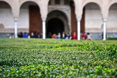 Nasrid Palaces / Palacios Nazares, La Alhambra (Trevor.Huxham) Tags: granada andalucia spain canonefs1855mmf3556is alhambra moorish worldheritagesite canoneosrebelxs