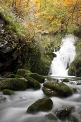 Zirauntza (Borja Triviño) Tags: musgo hojas arboles colores otoño cascada álava araia nacedero efectoseda asparrena ríozirauntza