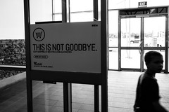 This is not goodbye (Latecomer (4tunesphotos)) Tags: go part goodbye urge knoxcity rx100 leae