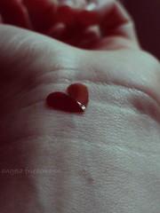 (angela.friedemann) Tags: love amor corao mo  angelafriedemann sonydsch55