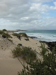 fuerteventura (takoyaki 77) Tags: islands fuerteventura canary corralejo playasgrandes