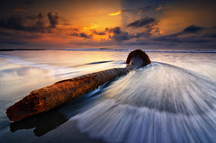 It Was a Beautiful Coconut Tree Once [Explored] (eggysayoga) Tags: sea bali seascape motion tree beach water sunrise indonesia lens landscape dead nikon coconut hard wave tokina filter 09 lee nd rol kelapa pantai graduated waterscape uwa pohon ultrawideangle 1116mm manyar d7000