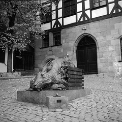 "Young Hare (in the ""Watership Down"" version) (lennox_mcdough) Tags: street city bw sculpture house plant building tree rabbit art 120 mamiya film analog mediumformat germany square deutschland bavaria hare nuremberg plastic mamiya6 rodinal negativescan ilford nürnberg asa50 panf rollfilm timberframing iso50 a89 panfplus panf50 panfplus50 mamiyag75mmf35l tiergärtnertor canoscan9000f takenin2012"
