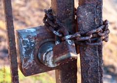 -Locked Out- (efiske) Tags: old texture abandoned rust gate rusty chain master rusted padlock locked textured corroded masterlock