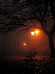 Mikko jesiennej mgy (Rafa Piekarczyk) Tags: park autumn light fog night canon explore noc jesie mga parkstrzelecki regionwide