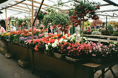 4-3 (Plaggue) Tags: flowers food market riga contaxt2 summer11