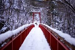 Snow covered bridge Jozankei (Thomo13) Tags: bridge winter red snow japan canon eos sapporo hokkaido suspension path mark ii 5d jozankei jouzankei gettyimagesjapan12q4